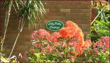 Lillypilly - Newcastle Accommodation