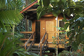 Cape Trib Beach House - Newcastle Accommodation