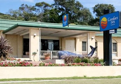 Comfort Inn Albany - Newcastle Accommodation