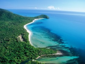Cape Tribulation Camping - Newcastle Accommodation