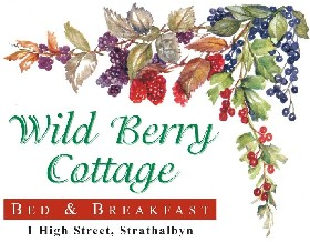 Wild Berry Cottage - Newcastle Accommodation