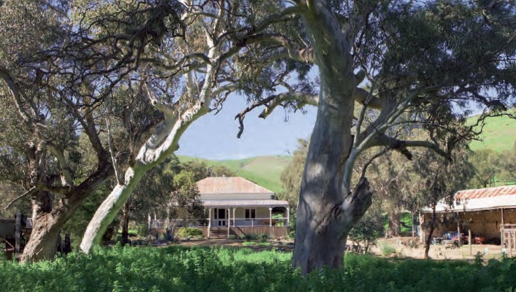 Brooklyn Farm Bed and Breakfast - Newcastle Accommodation