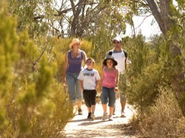 Long Island Caravan Park Cabins - Newcastle Accommodation
