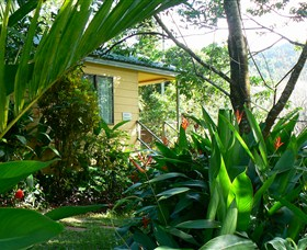Daintree Valley Haven - Newcastle Accommodation