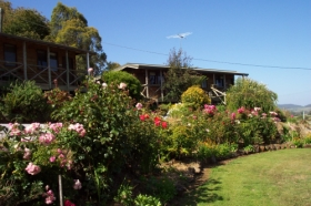 Mole Creek Holiday Village - Newcastle Accommodation