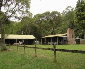 Tree Fern Lodge - Newcastle Accommodation