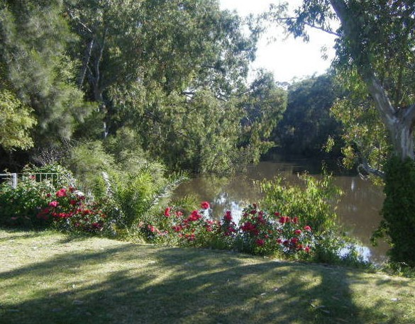 Bidgee Bankside Cottage - Newcastle Accommodation