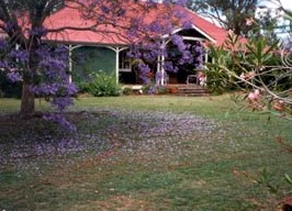 Minmore Farmstay Bed and Breakfast - Newcastle Accommodation