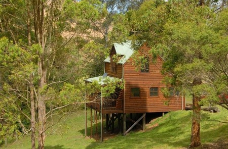Hookes Creek Forest Retreat - Newcastle Accommodation