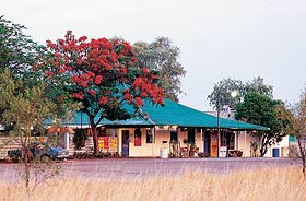 Wauchope Hotel and Roadhouse - Newcastle Accommodation