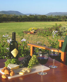 Tranquil Vale Vineyard Cottages - Newcastle Accommodation