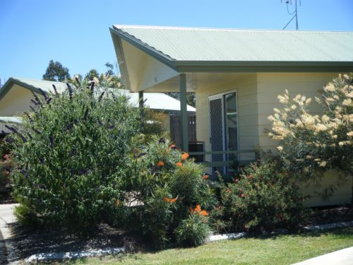 Pepper Tree Cabins - Newcastle Accommodation