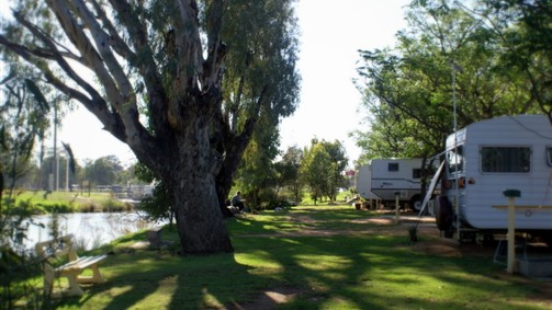 Numurkah Caravan Park - Newcastle Accommodation