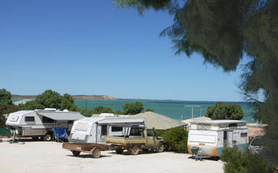 Blue Dolphin Caravan Park  Holiday Village - Newcastle Accommodation