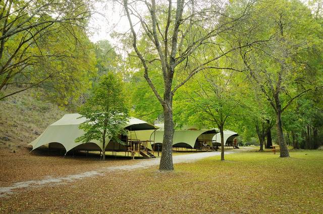 Buchan Caves Reserve - Newcastle Accommodation
