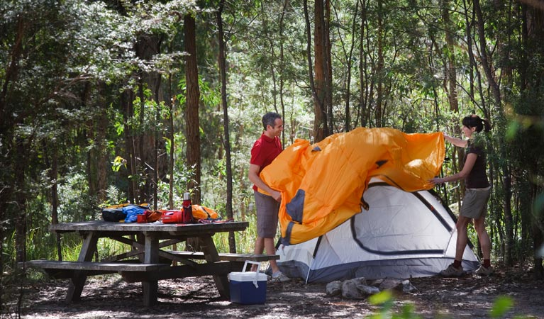 Bald Rock campground and picnic area - Newcastle Accommodation