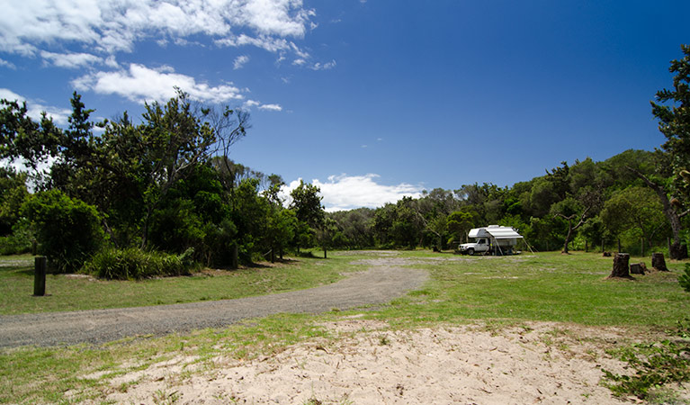 Banksia Green campground - Newcastle Accommodation