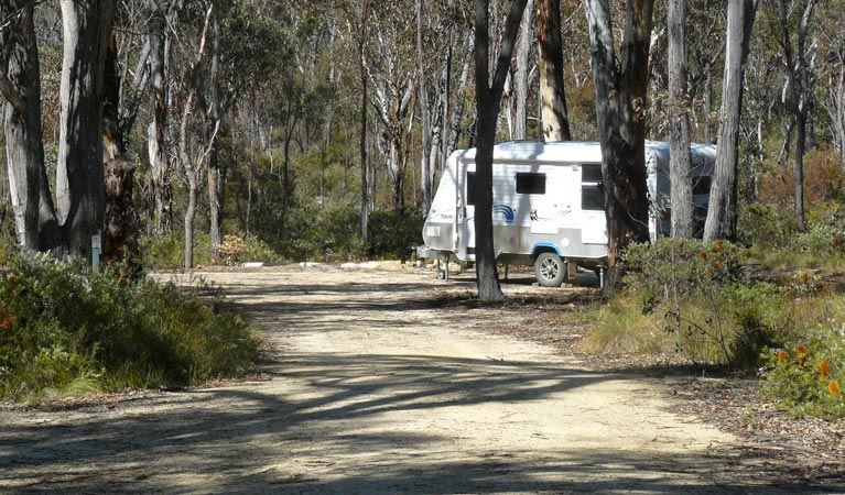 Blatherarm campground and picnic area - Newcastle Accommodation