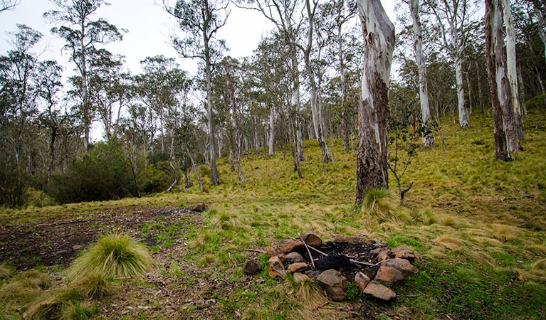 Gummi Falls campground - Newcastle Accommodation