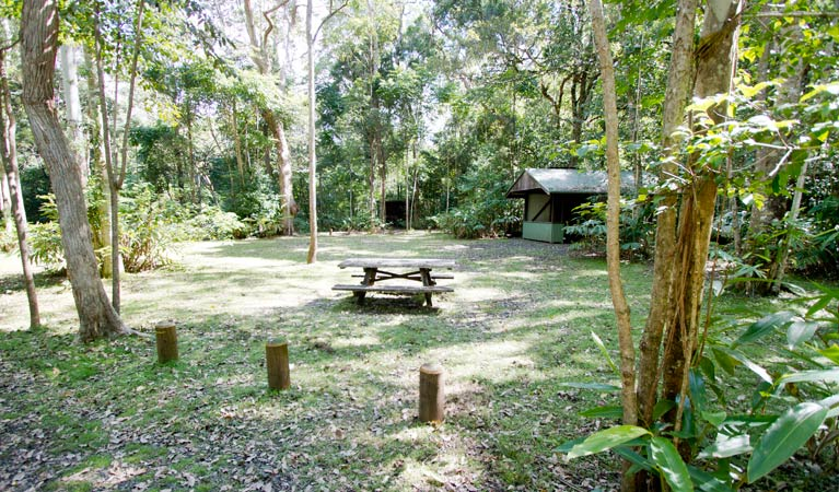 Iron Pot Creek campground - Newcastle Accommodation
