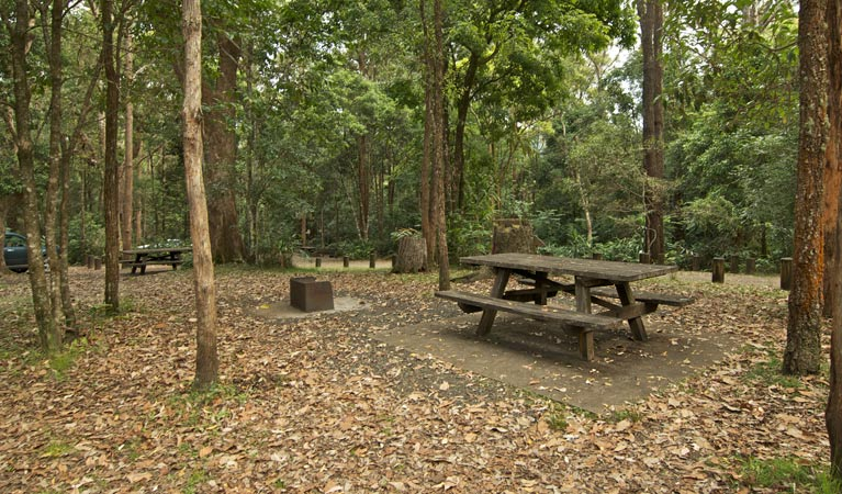 Sheepstation Creek campground - Newcastle Accommodation