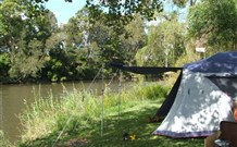 Williams River Holiday Park - Newcastle Accommodation