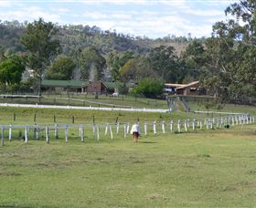Kellarni Downs Farmstay-Scenic Rim - Newcastle Accommodation
