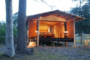 Worrowing Jervis Bay - Newcastle Accommodation