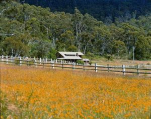 Pender Lea Alpine Guest Accommodation - Newcastle Accommodation