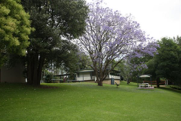 Hawkesbury Riverside Tourist Park - Newcastle Accommodation