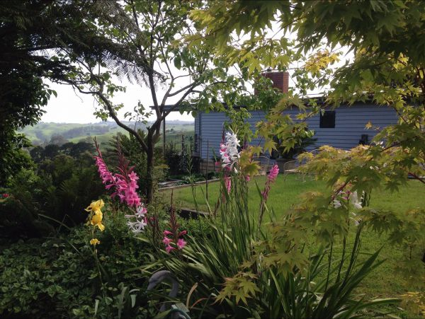 Halcyon Cottage Retreat - Self Contained Accommodation - Newcastle Accommodation