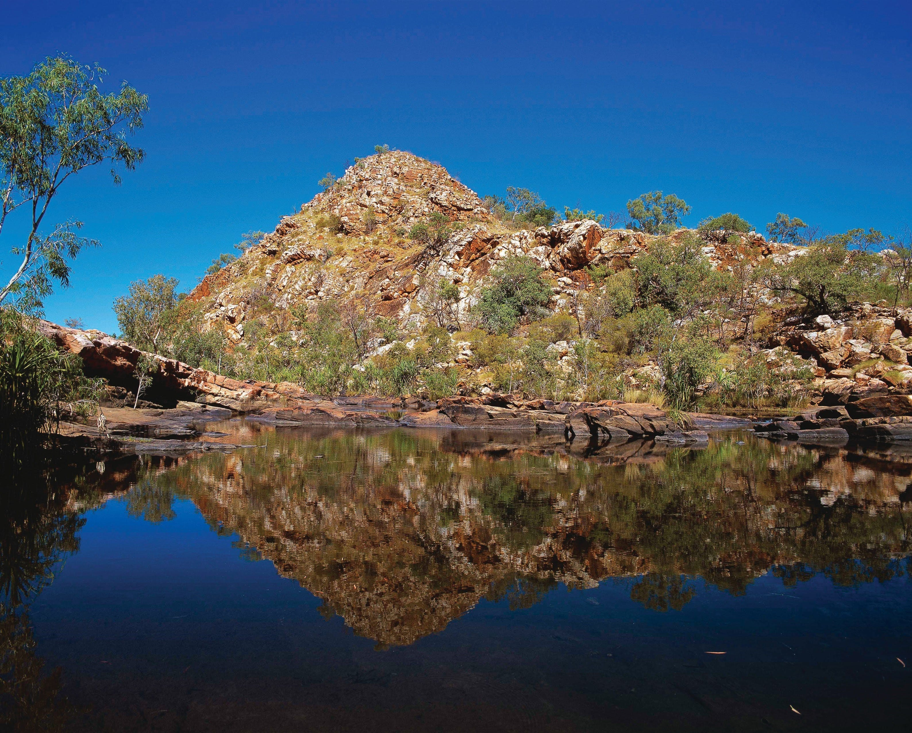 Silent Grove Camp at Wunaamin Miliwundi Ranges Conservation Park - Newcastle Accommodation