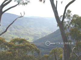 Craigmhor Mountain Retreat - Newcastle Accommodation