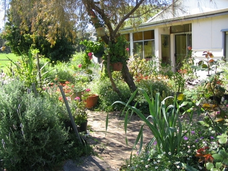 Warren Grange Farmstay and Bed  Breakfast - Newcastle Accommodation