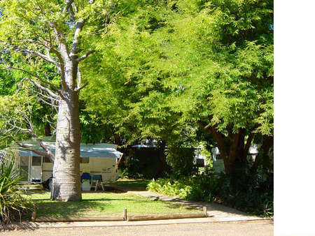 Town Caravan Park - Newcastle Accommodation
