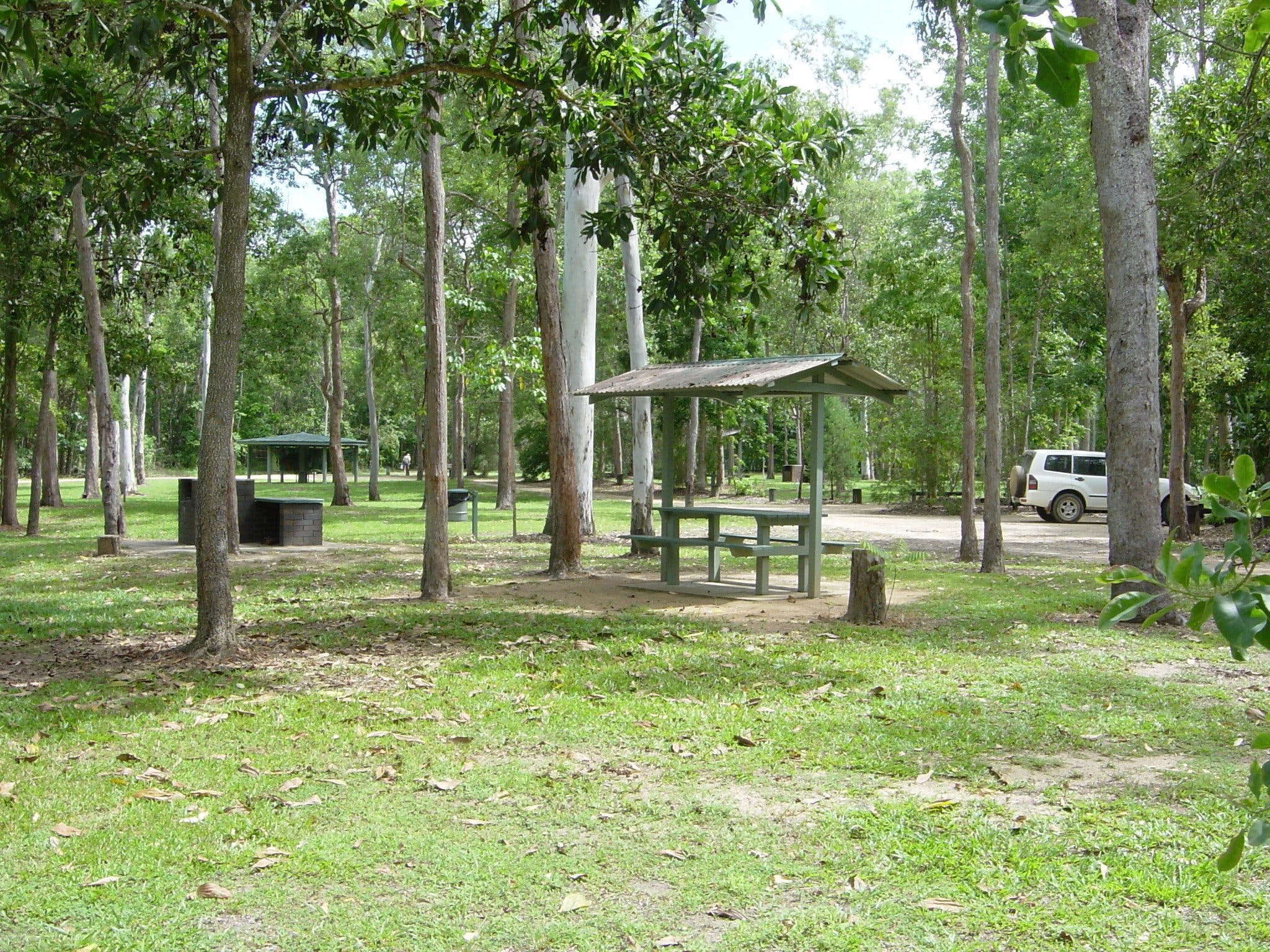 Broadwater camping area Abergowrie State Forest - Newcastle Accommodation