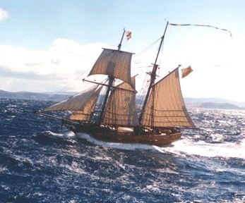 Enterprize - Melbourne's Tall Ship - Newcastle Accommodation