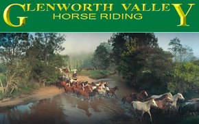 Glenworth Valley Horseriding - Newcastle Accommodation