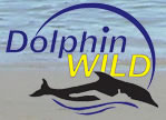 Dolphin Wild - Newcastle Accommodation
