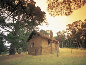 Heysen - The Cedars - Newcastle Accommodation