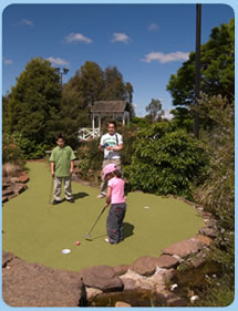 Wetlands Mini Golf - Newcastle Accommodation
