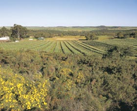Chapman Valley Scenic Drive - Newcastle Accommodation
