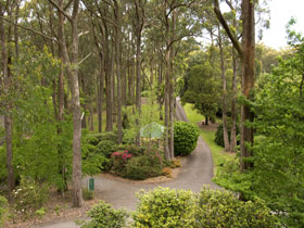 Mount Lofty Botanic Garden - Newcastle Accommodation