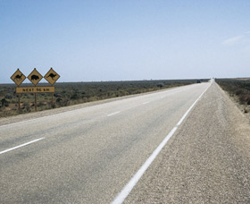 Eyre Highway - Newcastle Accommodation