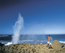 The Blowholes Carnarvon - Newcastle Accommodation