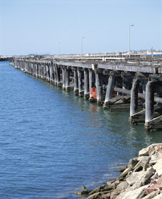 Old Timber Jetty - Newcastle Accommodation