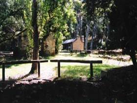 Wirrabara Forest Reserve - Newcastle Accommodation