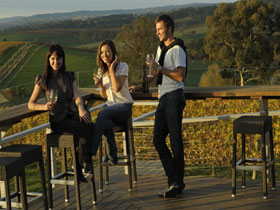 The Lane Vineyard - Newcastle Accommodation