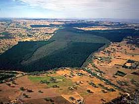 Mount Crawford Forest Reserve - Newcastle Accommodation