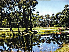 Smithton Country Club - Newcastle Accommodation